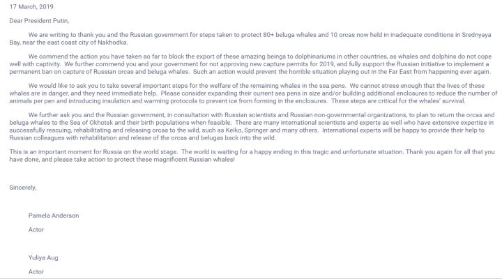 写给普京的公开信截图