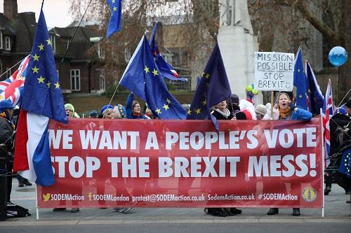 """2018年12月10日,在英国伦敦,指斥""""脱欧""""制定的民多在议会大厦外示威。 新华社发"""