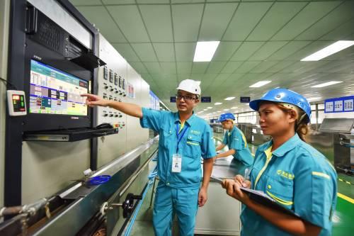 图为泰国罗勇工业园内。新华社