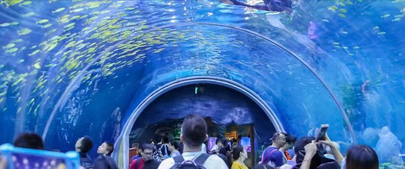 上海海昌海洋公园官网_这些主题公园让你度过一个不一样的假期 主题公园 海昌海洋公园 ...