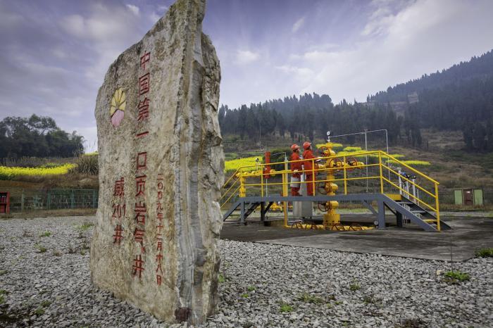 袁隆平正研究第四代杂交水稻,产量可达每亩1500公斤