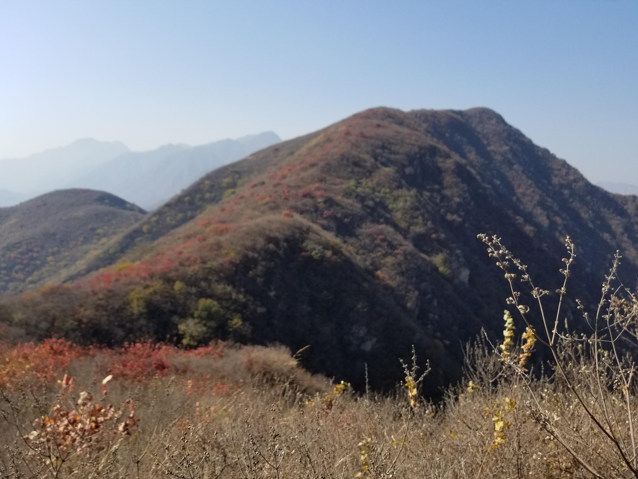 侵华日军摩崖石刻所在的凤凰山。刘卫东供图