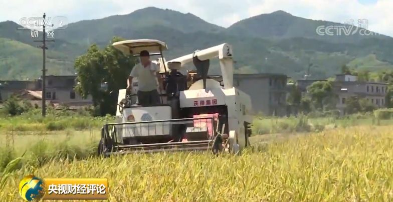 時隔23年中國再次發表糧食白皮書 釋放哪些新信号