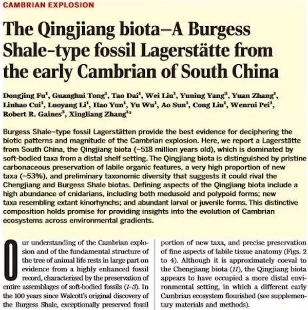 《科学》杂志发表页面 本文图均为 西北大学 提供