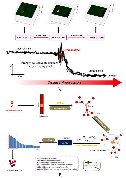 多戈论文检测_由单样本动态网络标志物检测生物过程/疾病过程的临界状态及其