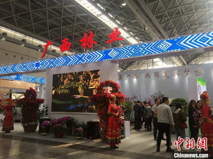 中国—东盟林木展推动双边林产业对接合作