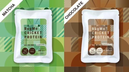 抹茶口味与巧克力口味的蟋蟀蛋白质棒