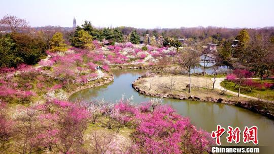 """江苏三市官方宣布""""入春"""" 均比常年提前10多天"""