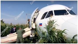 客机撞鸟后平安迫降 克宫将给飞行员发国家级奖励