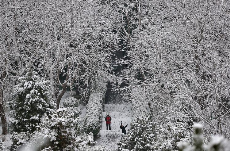 游客在山道上赏雪。