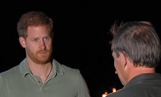 哈里接受采访(图源:视频截图)