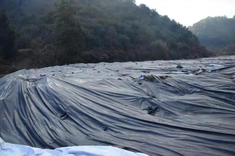 浙江丽水一企业放污泥未处理致损失 被判赔近百万