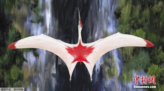 """9月10日,英国伦敦大学玛丽女王学院发布的图片显示了一个名为""""波瑞阿斯冰龙""""的翼龙新物种形象。"""