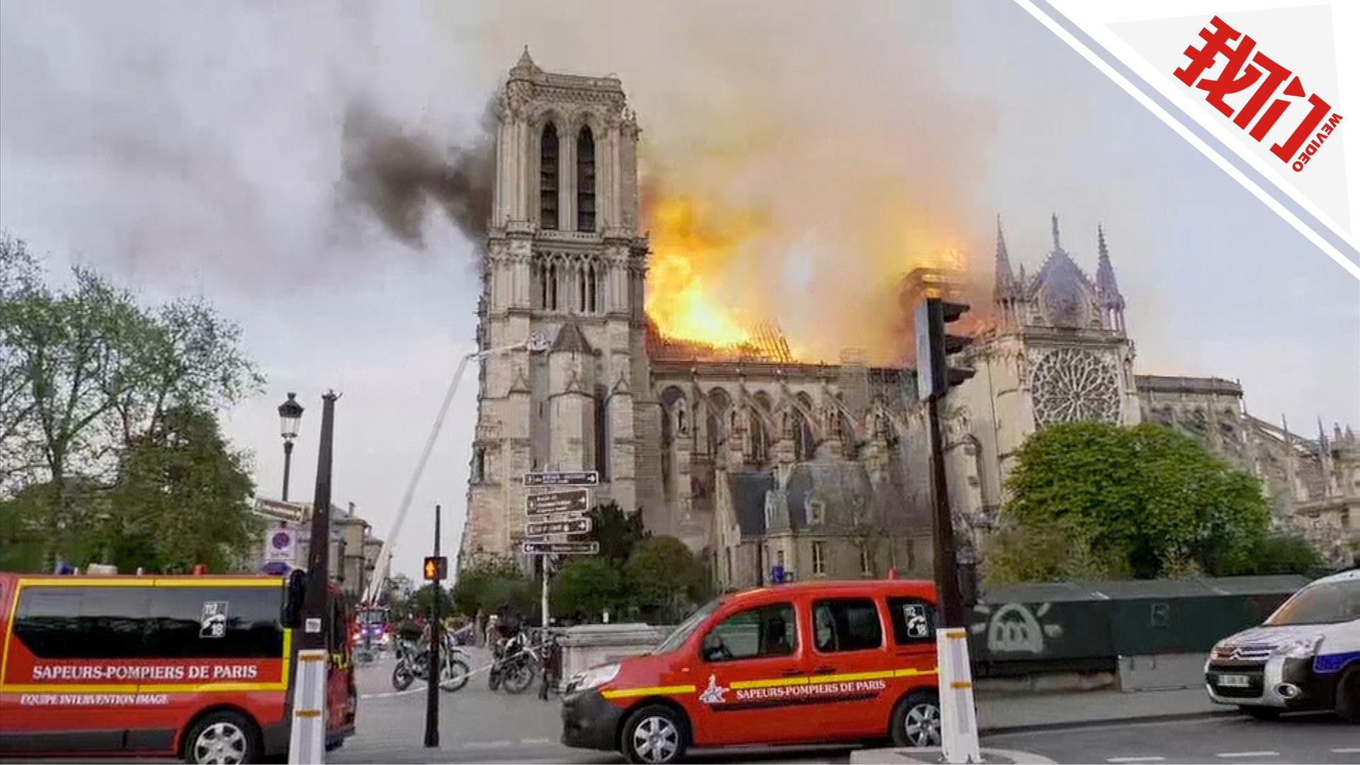 新巴黎花_巴黎圣母院得到消防人员抢救 著名玫瑰花窗被烧毁|花窗|巴黎 ...