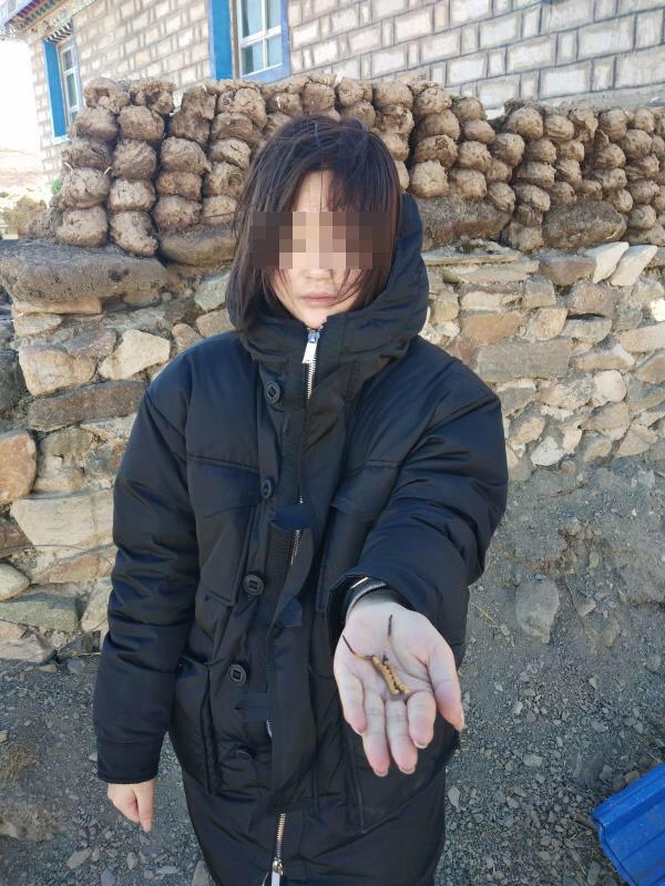 犯罪团伙专程雇人拍摄的伪自拍照。上海警方供图