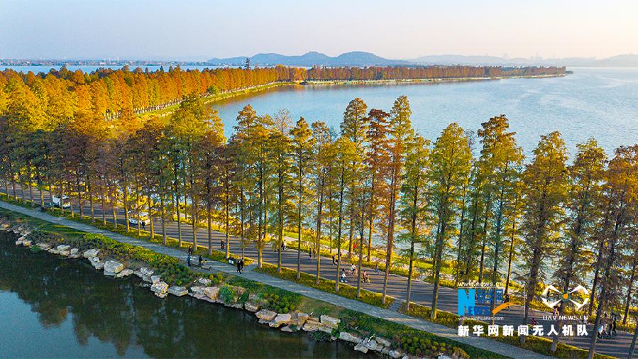 �_��|湖�G道――初冬的暖色�{