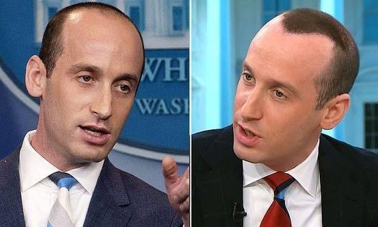 白宫高级顾问接受电视采访 网友却只关注其发际线