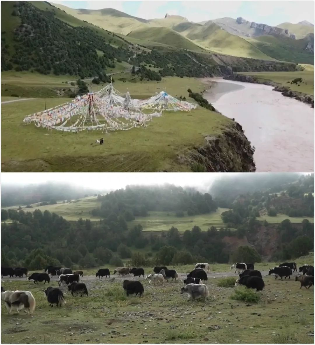 ▲壮美的青藏高原(报道截图)