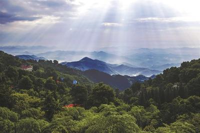 """德清县""""精而美""""的大产业莫干山民宿铸就国际乡村度假高地"""