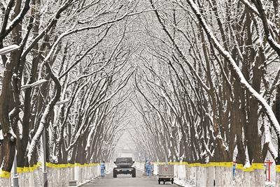 昨天上午,环卫工人在通州堡龙路清除雪水 黑建军图