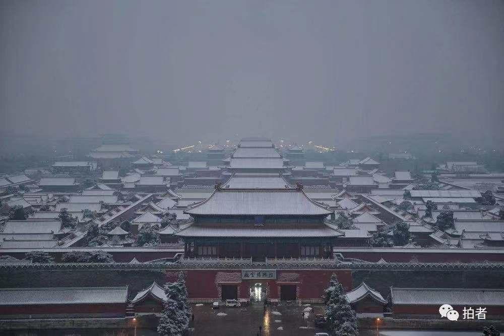 在景山上眺望故宫。新京报记者 薛珺摄