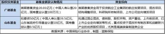 中国人寿股权基金投资项目