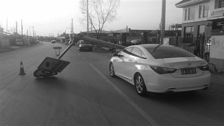 路边限速提示牌倒下,砸中停在路边的轿车。 当事人供图