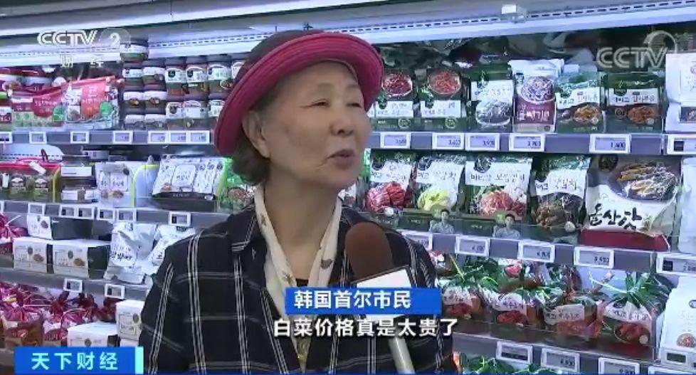 【蜗牛棋牌】一棵白菜30元?韩国主妇:泡菜都腌不起了