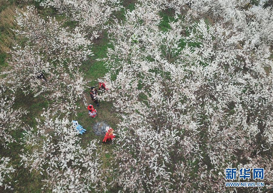 不忘初心病毒韩国外北京11不变 未来变暖