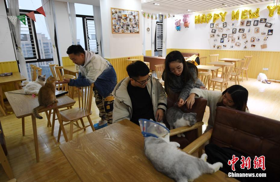 年将试验6日战广东宣布亚布塞县长拟跨省血测癌