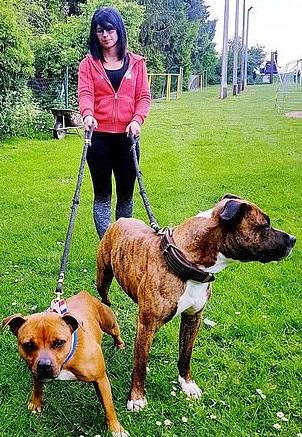 艾丽萨和她的宠物狗(图源:《每日邮报》)