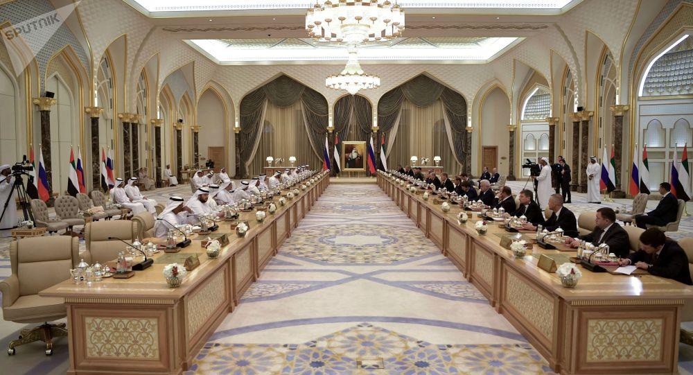 阿联酋与俄罗斯商谈商务合作等事项(俄罗斯卫星通讯社)