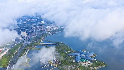 韩国开启体育外交 欲与朝鲜联合参加东京奥运会