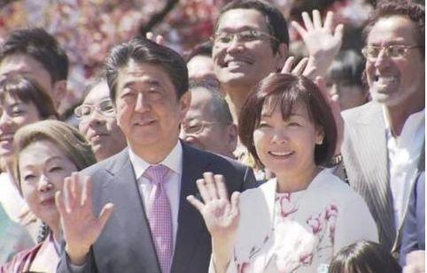 ▲资料图:安倍此前参加赏樱会。(图源:NHK)