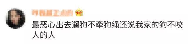 萍乡女子因遛狗不拴绳闯祸了 这回没伤人却被拘…