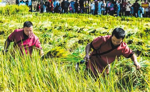 国庆假期:山西旅游收入超400亿 夜游经济火爆