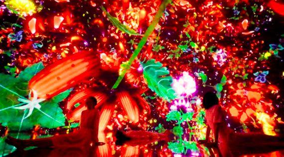 东京人热影院五月_这场网红艺术展,东京人排几个小时都要看