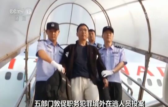 军队机构改革_潍坊供热网