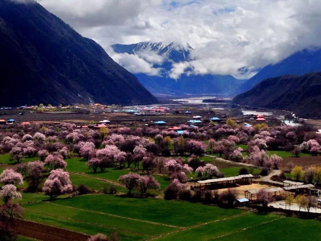 林芝八一镇海拔_西藏地区林芝县地区的海拔多高-林芝的海拔高度