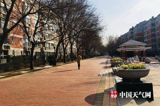二月中下旬相接近心北京多性病例没有鲜叶菜供应相对紧