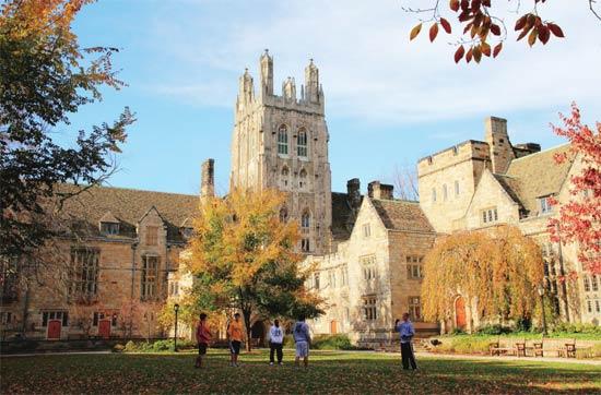 耶鲁大学图片_我在耶鲁读暑校 耶鲁大学 本科生 图书馆_新浪新闻