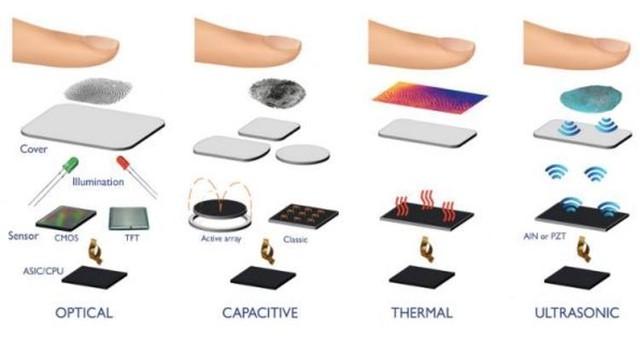 光学、电容、热敏、超声波是四种常见的指纹识别方式