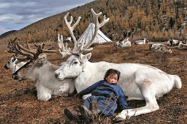 鲁一鲁人与动物_蒙古游牧民族 人与动物相伴相生
