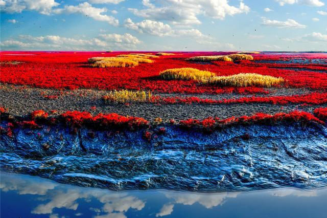 湿地之都 盘锦红海滩