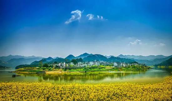攝影:陳安云