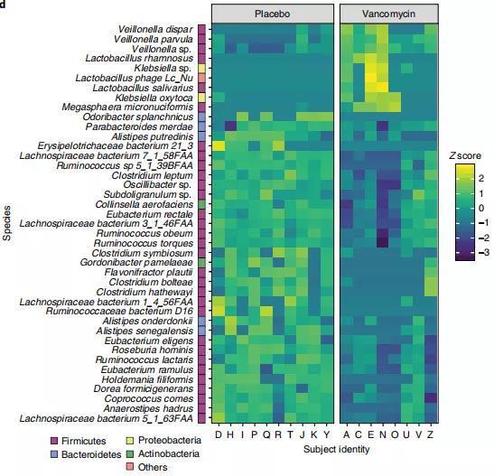安慰劑組和萬古霉素組腸道微生物組成對比