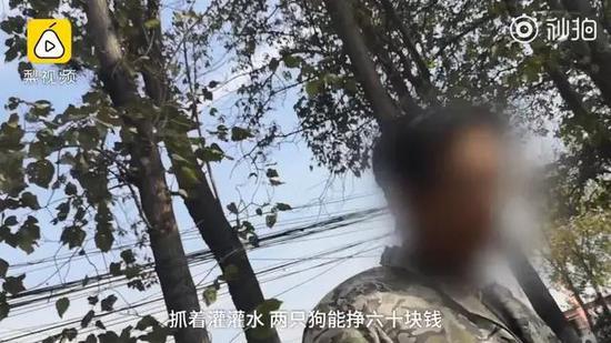photo / 一手video