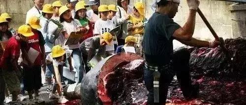 小门生不悦目摩学习鲸鱼解剖 / 世界华人周刊