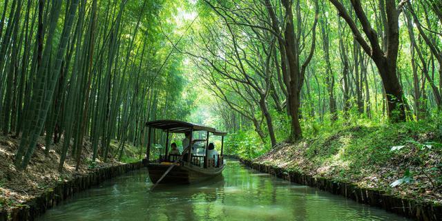 苏州最美国家湿地公园票价20元