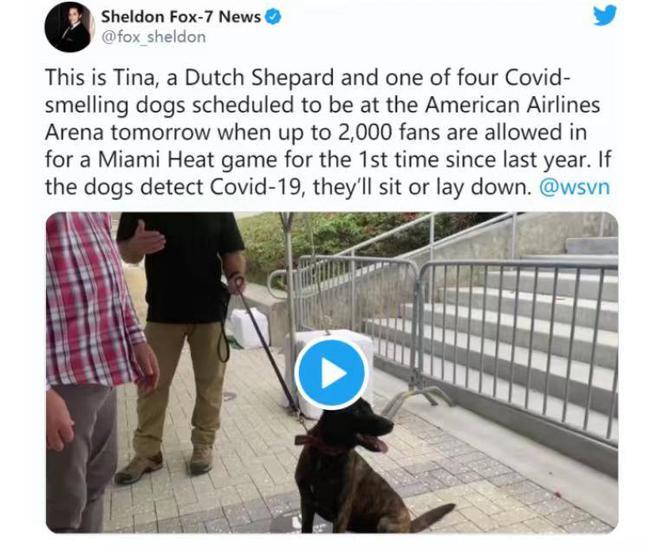 NBA也开始让狗检测新冠病毒 热火第一个引进